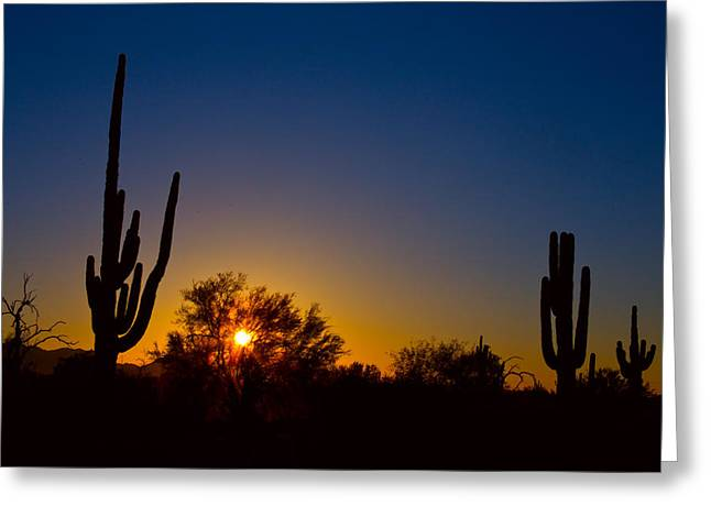 Phoenix Suns Greeting Cards - Just Another Sonoran Desert Sunrise Greeting Card by James BO  Insogna