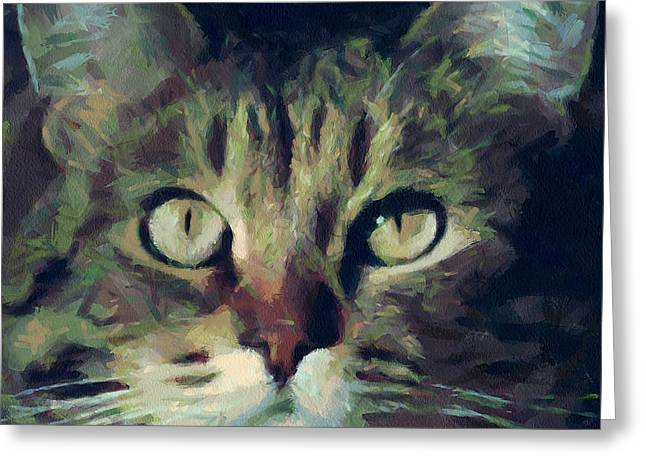 House Pet Digital Art Greeting Cards - Just be careful Greeting Card by Yury Malkov