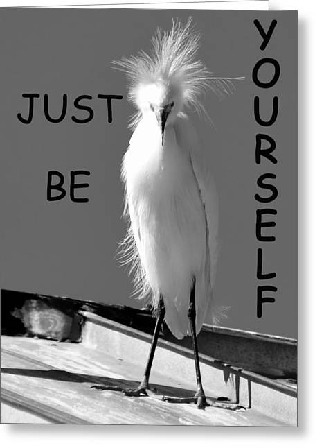 Be Yourself Greeting Cards - Just be Yourself Greeting Card by David Lee Thompson