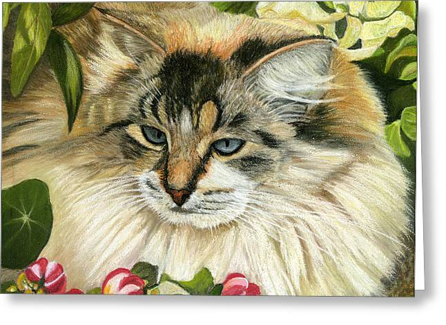 Cat Prints Pastels Greeting Cards - Just Chillin Greeting Card by Sarah Dowson