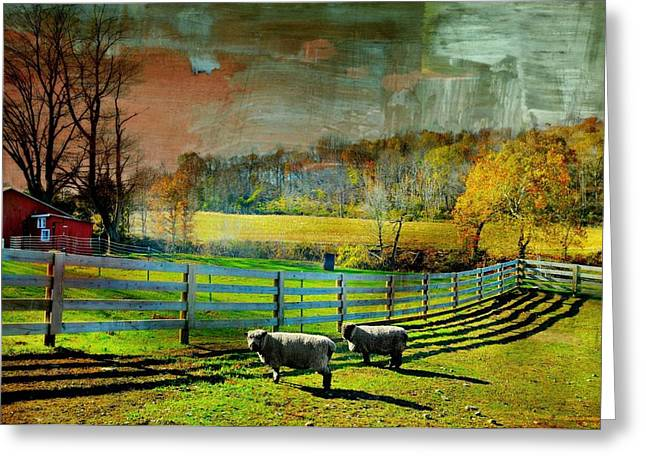 Warwick Greeting Cards - Just For Wool Greeting Card by Diana Angstadt