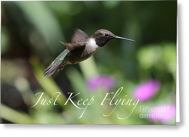 Going Forward Greeting Cards - Just Keep Flying Greeting Card by Carol Groenen