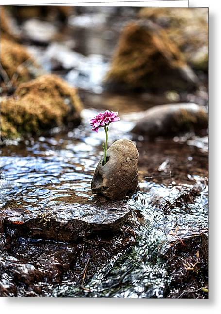 Just Let Your Love Flow Greeting Card by Aaron Aldrich
