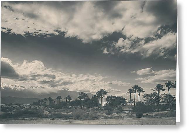 La Quinta Greeting Cards - Just Like You Said It Would Be Greeting Card by Laurie Search