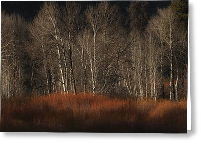 Western Canada Landscape Art Greeting Cards - Just Look at that Glow Greeting Card by Paul W Sharpe Aka Wizard of Wonders