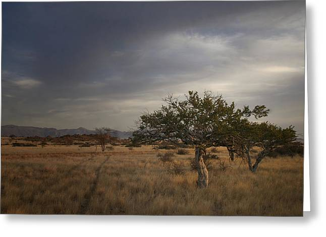 Recently Sold -  - Field. Cloud Greeting Cards - Just off the beaten track Greeting Card by A Rey