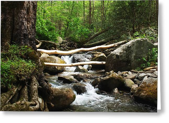 Just Outside of Gatlinburg Greeting Card by Mountain Dreams
