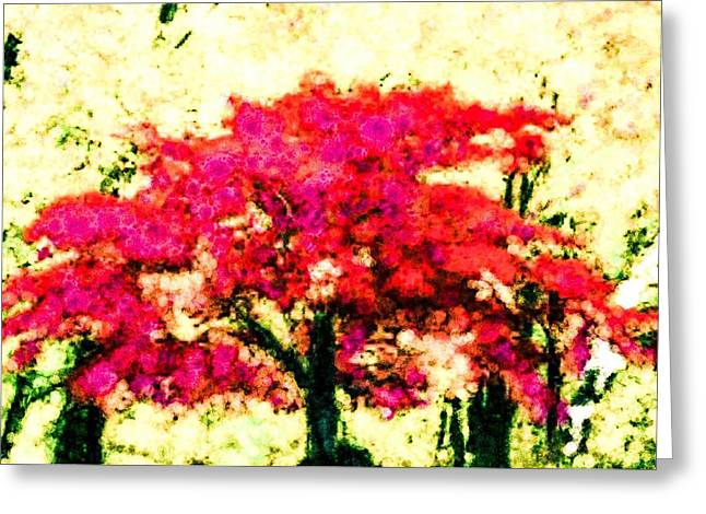 Way Home Greeting Cards - Just Outside Greeting Card by Steven Boland