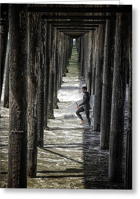 California Beach Greeting Cards - Just Passing Through Greeting Card by Joan Carroll