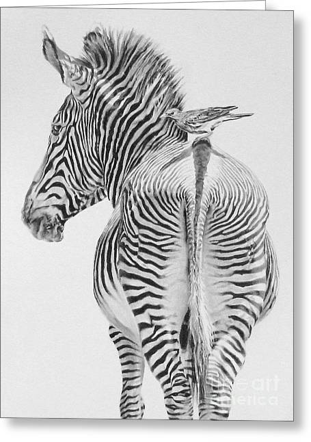 Serengeti Drawing Greeting Cards - Just Passing Through Greeting Card by Kathryn Hansen