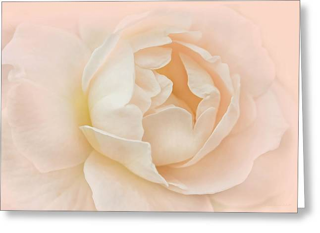 Light Peach Greeting Cards - Just Peachy Rose Flower Greeting Card by Jennie Marie Schell
