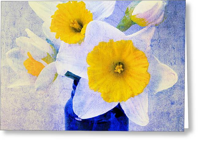 Just Plain Daffy 2 In Blue - Flora - Spring - Daffodil - Narcissus - Jonquil  Greeting Card by Andee Design