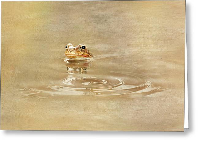 Amphibian Mixed Media Greeting Cards - Just She Was Still There Greeting Card by Heike Hultsch