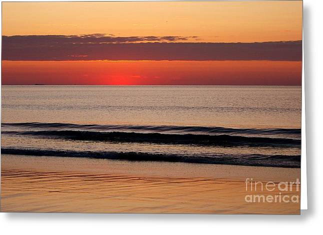 Eunice Miller Greeting Cards - Just Showing Up Along Hampton Beach Greeting Card by Eunice Miller