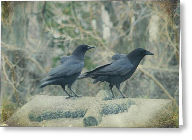 Passerine Greeting Cards - Just The Two Of Us Greeting Card by Gothicolors Donna Snyder