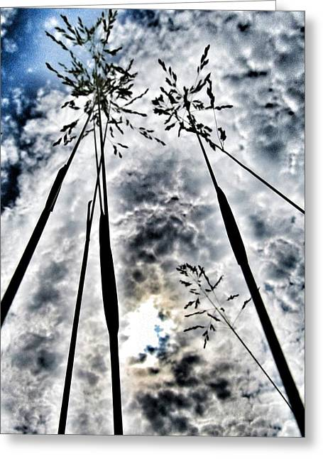 Just Too High... Greeting Card by Marianna Mills