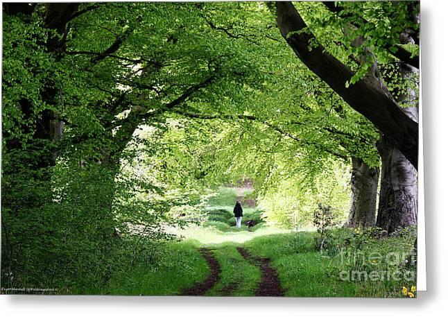 Dog Walking Greeting Cards - Just walking the dog Greeting Card by Merice Ewart Marshall