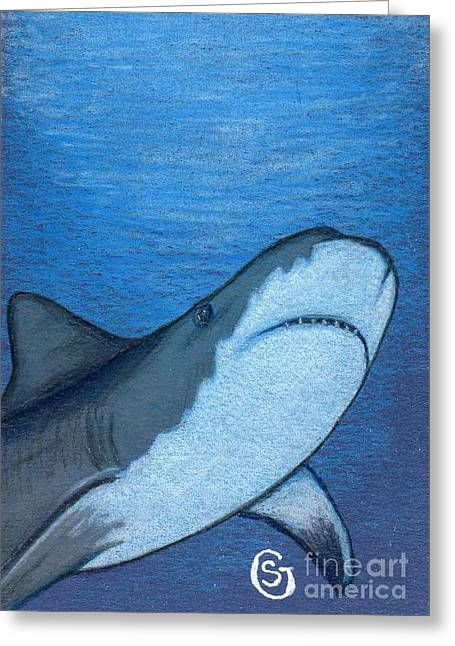 White Shark Drawings Greeting Cards - Just When You Thought It Was Safe to Get In... Greeting Card by Sherry Goeben