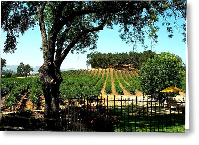 Grape Vineyard Greeting Cards - Justin Vineyards Paso Robles California Wine Country Winery Greeting Card by Ron Bartels