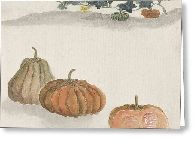 Art Decor Greeting Cards - Kabocha squash Greeting Card by Aged Pixel