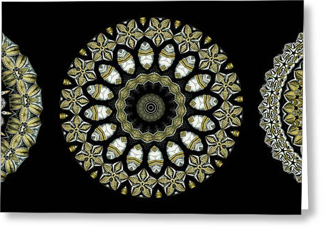 Biology Greeting Cards - Kaleidoscope Ernst Haeckl Sea Life Series Steampunk Feel Triptyc Greeting Card by Amy Cicconi
