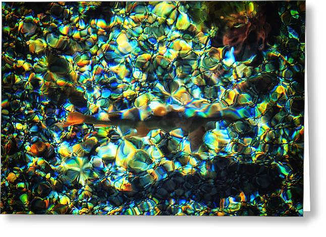 Brook Trout Image Greeting Cards - Kaleidoscope Greeting Card by Rick Furmanek