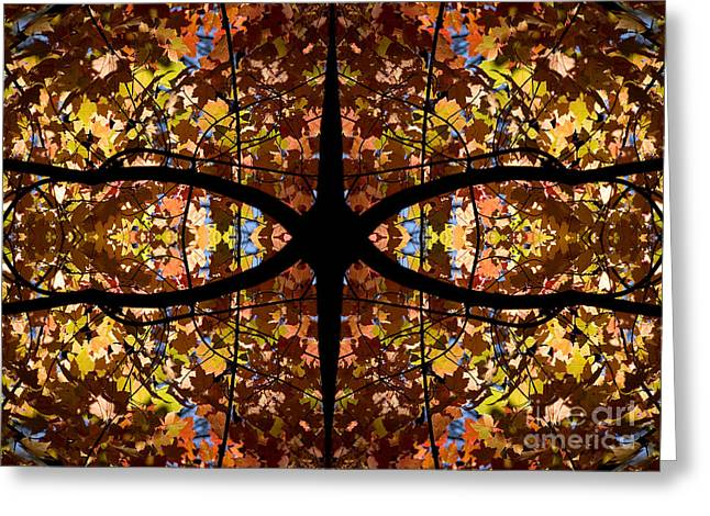 Steven Ralser Greeting Cards - Kaleidoscope Greeting Card by Steven Ralser
