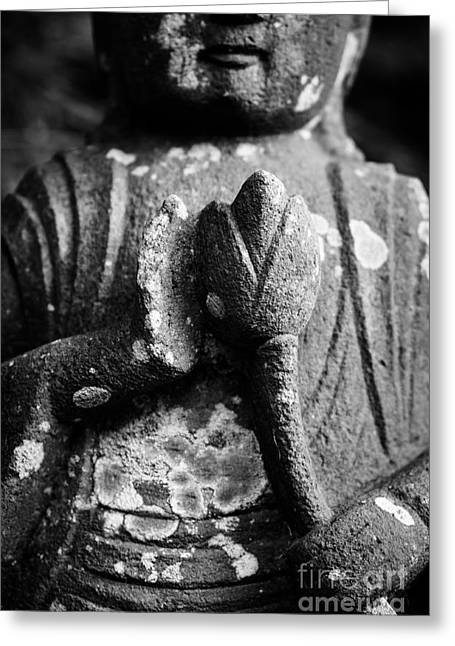Abhaya Greeting Cards - Kamakura Buddha IV - Buddha Holding Lotus Flower Greeting Card by Dean Harte