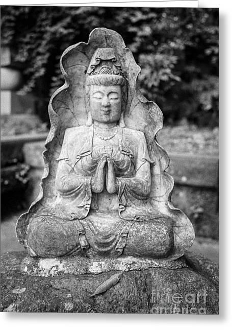 Kamakura Greeting Cards - Kamakura Buddha VII Greeting Card by Dean Harte