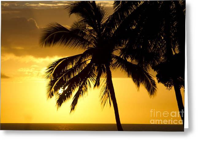 Niu Greeting Cards - Kamaole Sunset Kihei Maui Hawaii Greeting Card by Sharon Mau