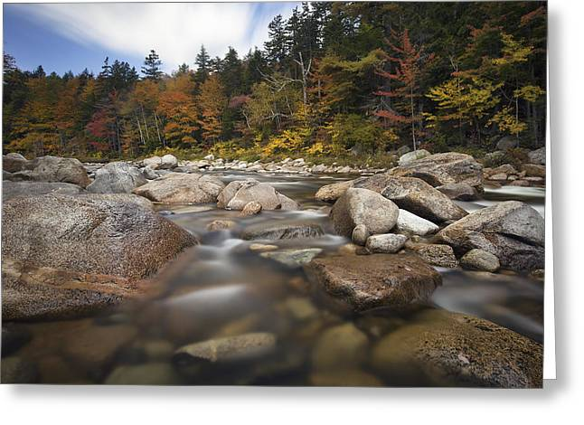 Kanc Colors Greeting Card by Eric Gendron