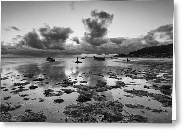 Top Seller Greeting Cards - Kaneohe Bay Greeting Card by Tin Lung Chao
