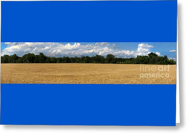 Wheat Field Sky Pictures Greeting Cards - Kansas Wheat Field 5A Greeting Card by Gary Gingrich Galleries