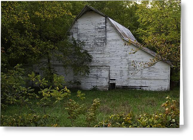 Barnstormer Greeting Cards - Kansas White Barn Greeting Card by Guy Shultz