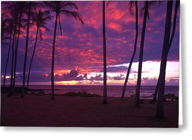 Kapaa Kauai Sunrise Greeting Card by Brian Harig