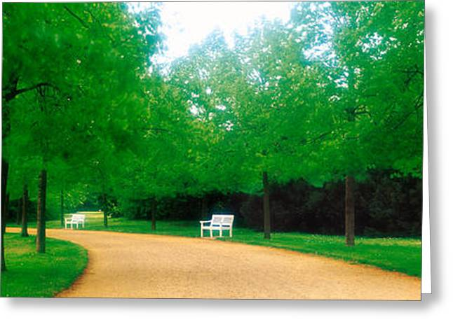 Tree Lines Greeting Cards - Karlsaue Park Kassel Germany Greeting Card by Panoramic Images