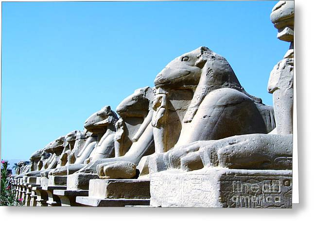 Pharaoh Greeting Cards - Karnak Temple Statue 14 Greeting Card by Antony McAulay
