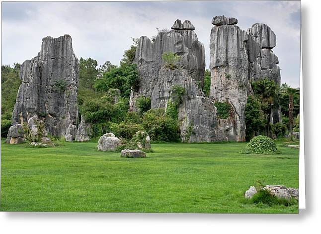 Karst Stone Forest In Yunnan Province Greeting Card by Tony Camacho