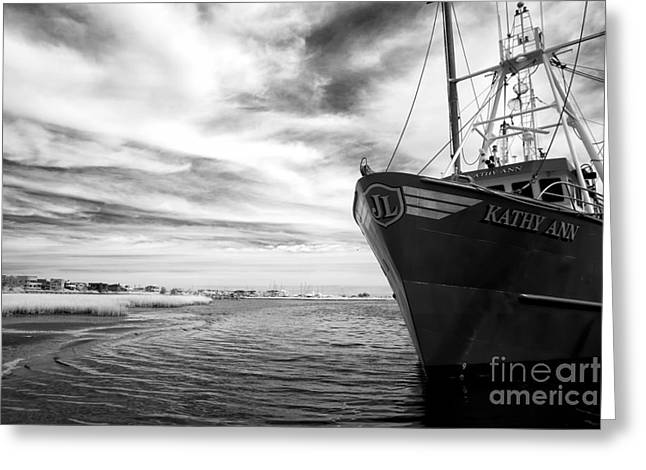 Kathy Greeting Cards - Kathy Ann bw Infrared Greeting Card by John Rizzuto