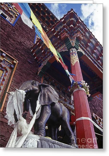 Kathok Monastery Greeting Cards - Katok Dorjeden Monastery - Tibet Greeting Card by Craig Lovell