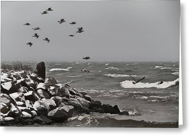 Ocean Spray Greeting Cards - Kattegat Greeting Card by Odd Jeppesen
