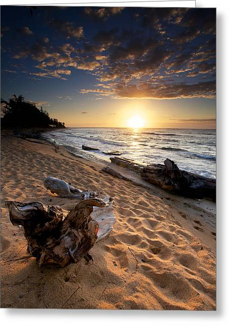 Driftwood Greeting Cards - Kauai Beach East Greeting Card by Ed Boudreau