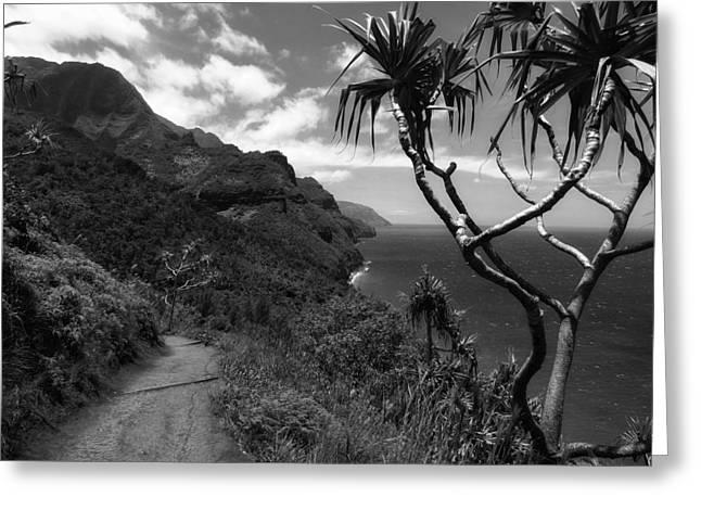 Paradise Road Greeting Cards - Kauai Coastline Greeting Card by Mountain Dreams