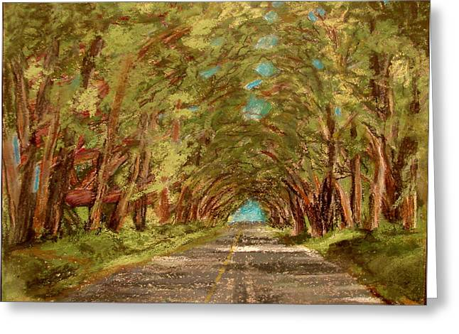 Pacific Pastels Greeting Cards - Kauiai Tunnel of trees Greeting Card by Joseph Hawkins