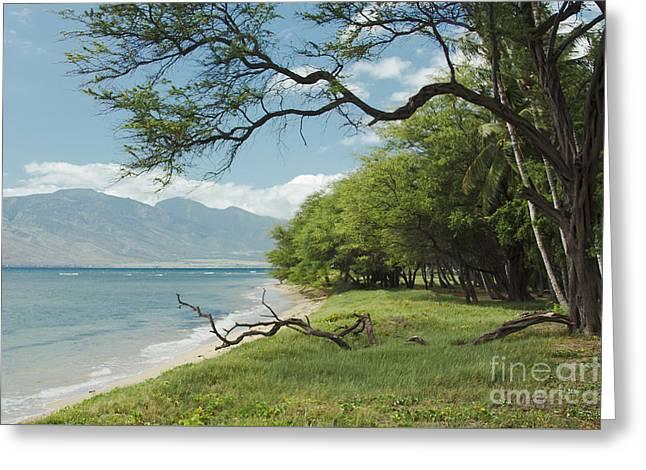 Coastal Impressions Greeting Cards - Kawililipoa Beach Kihei Maui Hawaii Greeting Card by Sharon Mau