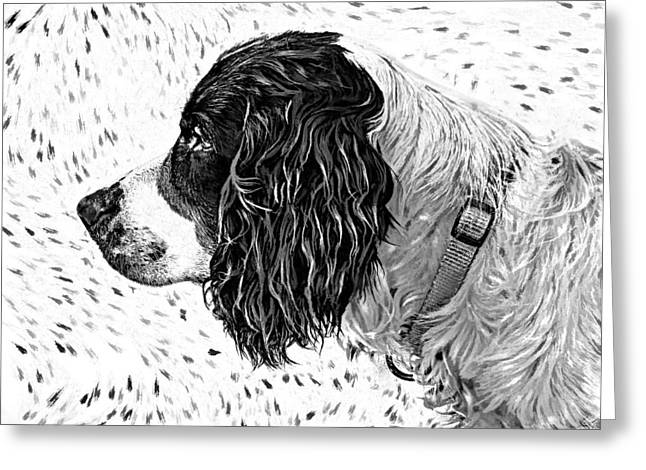 Spaniel Digital Art Greeting Cards - Kaya wood carving filter Greeting Card by Steve Harrington