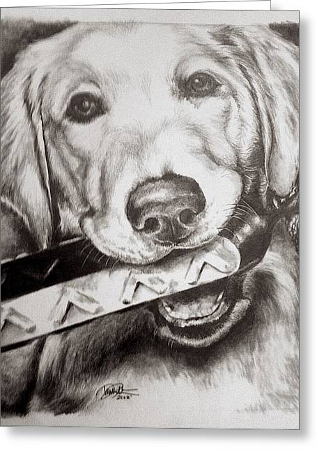 Puppies Drawings Greeting Cards - Kayla Greeting Card by Danielle  Pellicci