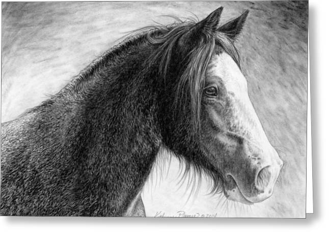 Gypsy Vanner Horse Greeting Cards - Kaylee Greeting Card by Katherine Plumer
