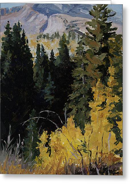 Impressionistic Landscape. Fall Greeting Cards - Kebler Pass Greeting Card by Mary Giacomini