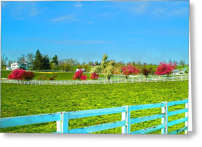 Keeneland Greeting Cards - Keeneland Horse Farm Greeting Card by Randall Branham